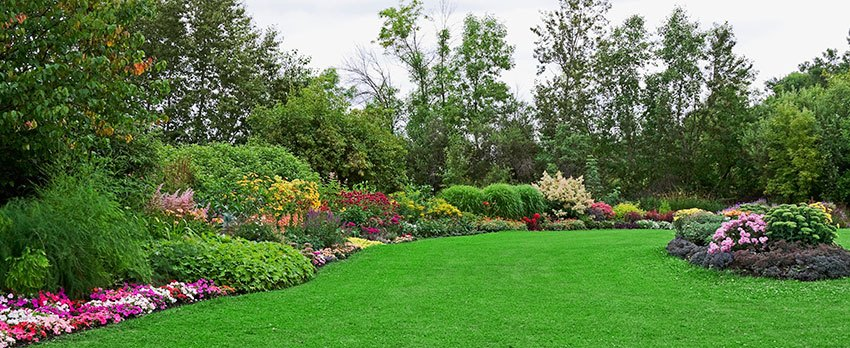 Superieur How To Start A Beautiful Garden And Why?