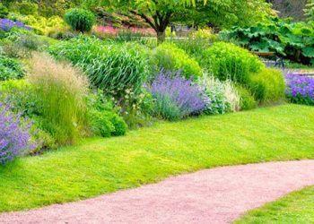 Create a unique garden