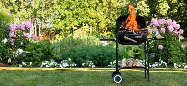 barbecue yard