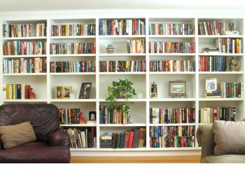 reviving the bookcase