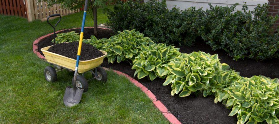 When should we consider putting mulch in the garden